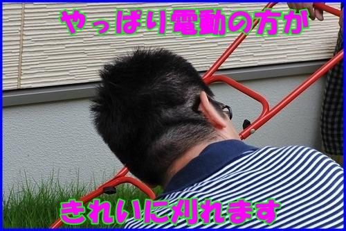 DSC_9111_20110707232805.jpg