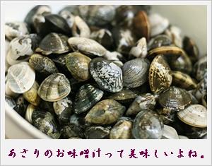 IMG_0001asari.jpg