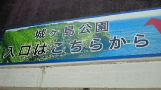 20110704102607.jpg