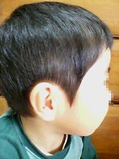 20061126010340.jpg