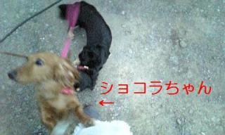 070716_185009_ed.jpg