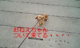 070718_150810_ed.jpg