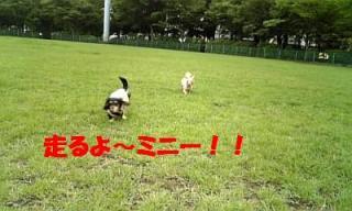 070723_154821_ed.jpg