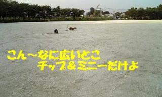 070806_172549_ed.jpg