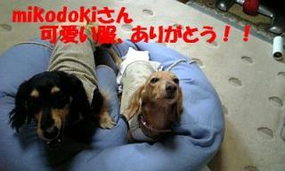 070808_160619_ed.jpg