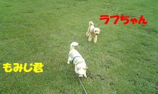 070809_182046_ed.jpg