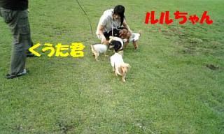070809_182235_ed.jpg