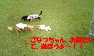 071010_165826_ed.jpg