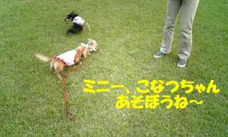 071010_165853_ed.jpg