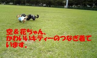 071012_160006_ed.jpg