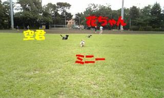 071012_160021_ed.jpg