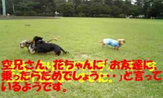 071012_160031_ed.jpg