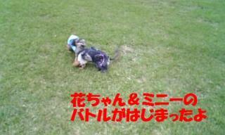 071012_160600_ed.jpg