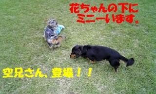 071012_160716_ed.jpg