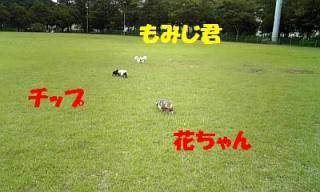 071012_161111_ed.jpg