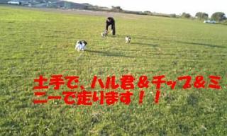071021_160856_ed.jpg