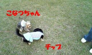 071107_154603_ed.jpg