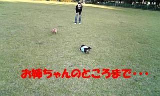 071107_154714_ed.jpg