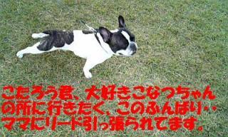 071107_160014_ed.jpg