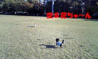 071112_143111_ed.jpg