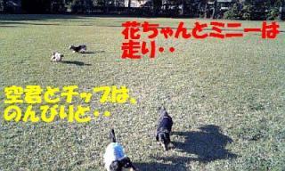 071112_144046_ed.jpg