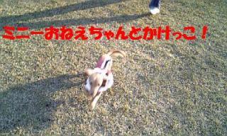 071121_150755_ed.jpg