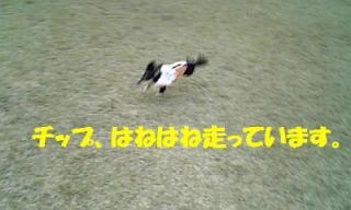 071121_150838_ed.jpg