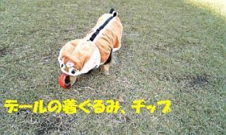 071121_151012_ed.jpg