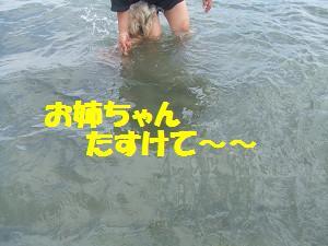 resize0178.jpg