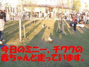 resize0484.jpg