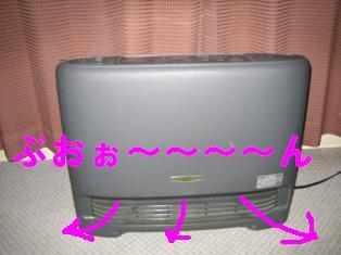 20070117211803.jpg