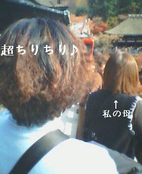 20071208_1204_0001.jpg