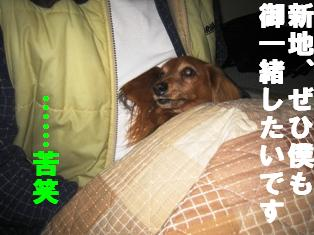 IMG_1539_2.jpg