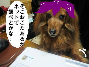 IMG_1670blog.jpg