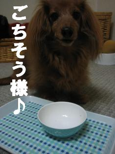 IMG_1772burogu.jpg
