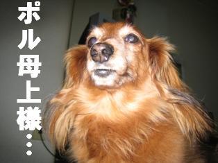 IMG_1837_2burogu.jpg