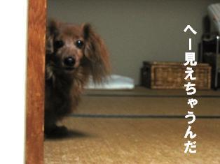 IMG_1885blog.jpg
