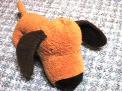 IMG_2006burogu.jpg