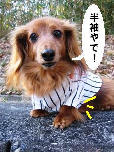 IMG_2149blog.jpg