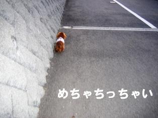 IMG_2152blog.jpg