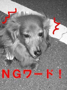 IMG_2159blog.jpg