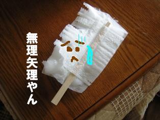 IMG_2245blog.jpg