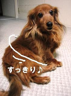 IMG_2261blog.jpg