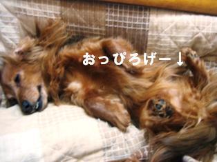 IMG_2298blog.jpg