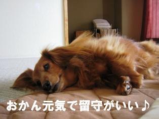 IMG_2311blog.jpg