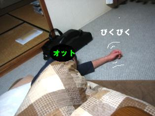 IMG_2320blog.jpg