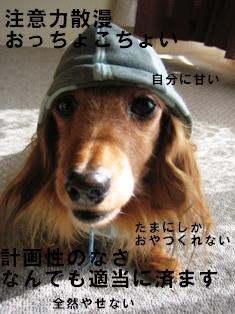 IMG_2358blog.jpg