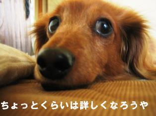 IMG_2373blog.jpg