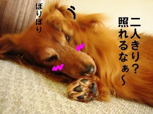 IMG_2388blog.jpg