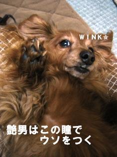 IMG_2414blog.jpg